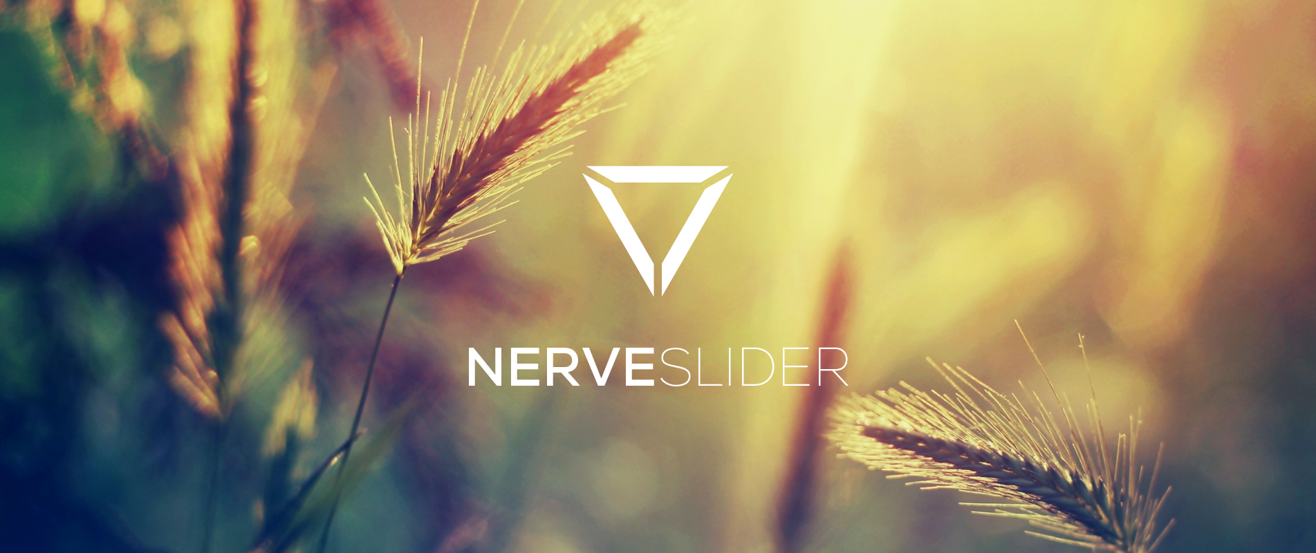 Nerve Slider, a simple, free, and versatile jQuery slider plugin.